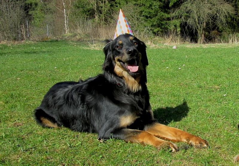 Aquilas 1. Geburtstag