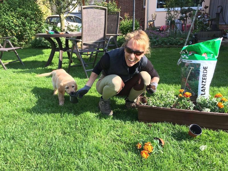 Cajou hilft bei der Gartenarbeit!