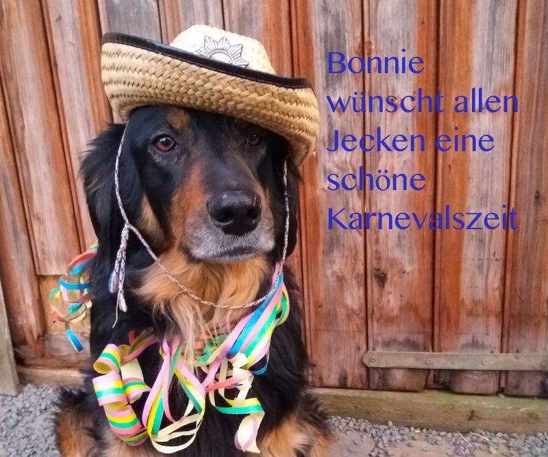 Cowboybonnie
