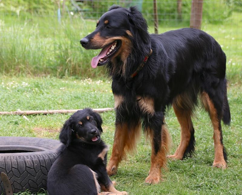 Bonnie und Mama
