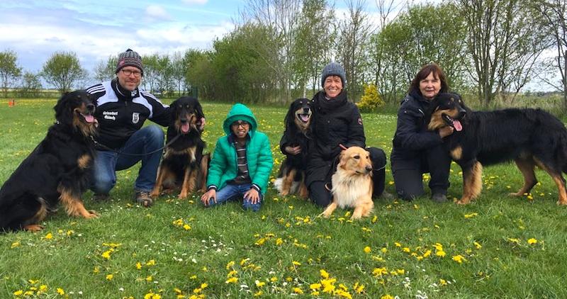 Nach dem Training in Niederelvenich: von links Aquila, Bonnie, Aydin, Cajou und Cato!