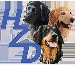 hzd-logo-neu1